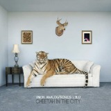 Cheetah In The City Lyrics Blu