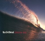Electric Sea Lyrics Buckethead