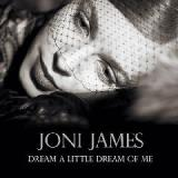 Dream A Little Dream Of Me Lyrics Joni James