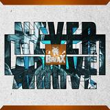 Never Arrive Lyrics theBREAX