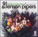 Green Tambourine Lyrics Lemon Pipers