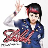 Picture Imperfect Lyrics Shiloh