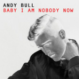 Baby I Am Nobody Now (Single) Lyrics Andy Bull
