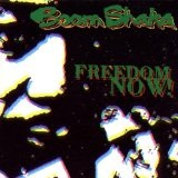 Freedom Now Lyrics Boom Shaka