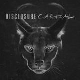 Caracal Lyrics Disclosure