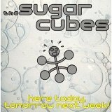 Here Today Tomorrow Next Week Lyrics Sugarcubes