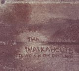 Travels In The Dustland Lyrics The Walkabouts