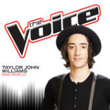 Mad World (The Voice Performance) [Single] Lyrics Taylor John Williams