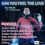 Can You Feel the Love (Remixes) Lyrics DJ Valdi