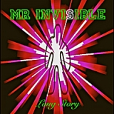 Mr Invisible Lyrics Long Story