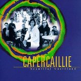 Beautiful Wasteland Lyrics Capercaillie