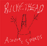 Acoustic Shards Lyrics Buckethead