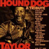 Miscellaneous Lyrics Hound Dog Taylor