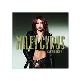 Can't Be Tamed Lyrics Miley Cyrus