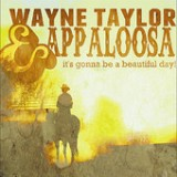 It's Gonna Be a Beautiful Day Lyrics Wayne Taylor And Appaloosa