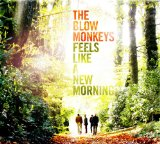 Feels Like A New Morning Lyrics Blow Monkeys