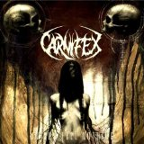 Until I Feel Nothing Lyrics Carnifex