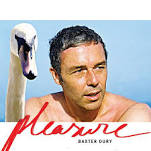 It's a Pleasure Lyrics Baxter Dury