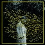 Engravings Lyrics Forest Swords