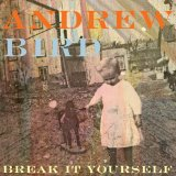 Break it Yourself Lyrics Andrew Bird