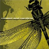 Miscellaneous Lyrics Coheed & Cambria