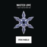 Wasted Love (Single) Lyrics Steve Angello