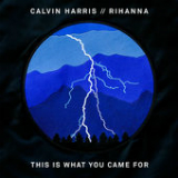This Is What You Came For (Single) Lyrics Calvin Harris