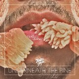 Underneath The Pine Lyrics Toro Y Moi