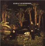 Evergreen Lyrics Echo & The Bunnymen