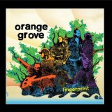 Fingerprint Lyrics Orange Grove