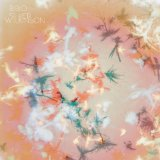 Silver Wilkinson Lyrics Bibio