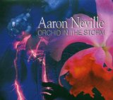 Orchid In The Storm Lyrics Aaron Neville