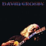 It's All Coming Back To Me Now Lyrics David Crosby