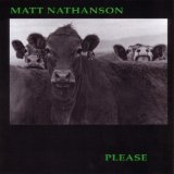 Please Lyrics Matt Nathanson