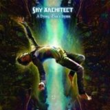 A Dying Man's Hymn Lyrics Sky Architect