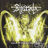 Psalms Of Conscious Martyrdom Lyrics Stigmata