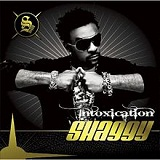 Intoxication Lyrics Shaggy