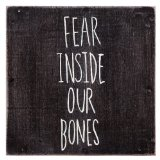 Fear Inside Our Bones Lyrics The Almost