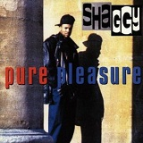 Pure Pleasure Lyrics Shaggy