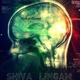 Pineal Gland Lyrics Shiva Lingam