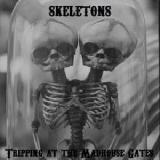 Tripping At The Madhouse Gates Lyrics Skeletons