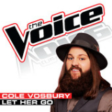 Let Her Go (Single) Lyrics Cole Vosbury