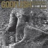 Slavestate Lyrics Godflesh