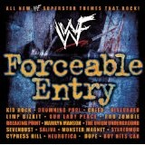 WWF Forceable Entry Lyrics Our Lady Peace