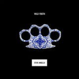 Wild Youth Lyrics Steve Angello