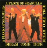Dream Come True Lyrics A Flock Of Seagulls