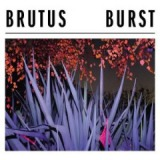 Burst Lyrics Brutus