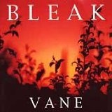 Vane Lyrics Bleak