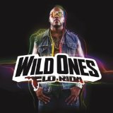 Wild Ones Lyrics Flo Rida
