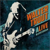 Pain in the Streets Lyrics Walter Trout